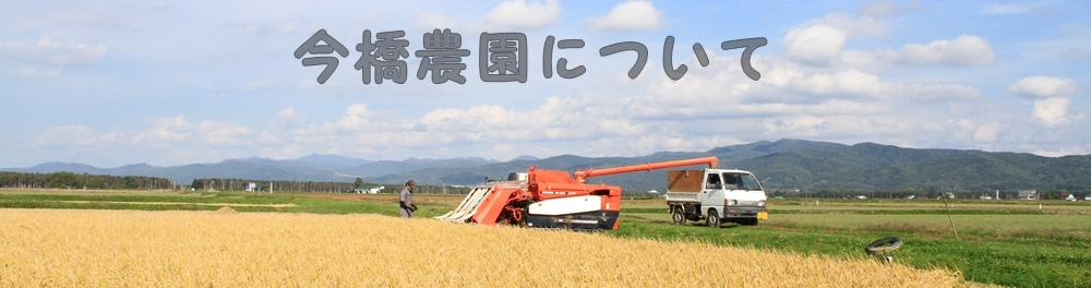 稲刈り画像